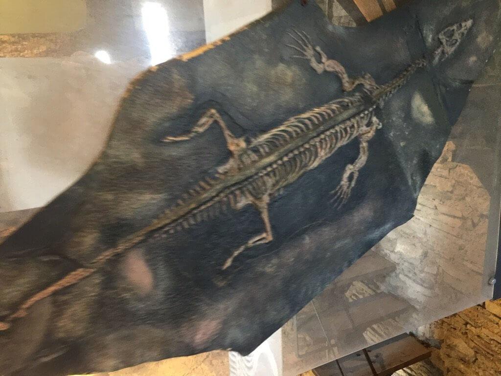 Лариозавр озеро Комо